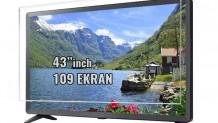 43 inch 109 TV Ekran Koruyucu